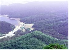 <천연기념물 제247호 고성 향로봉 건봉산 천연보호구역> 사진_고성군청